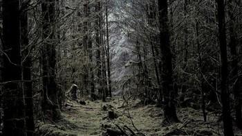 暗い場所での撮影時にはいつもマニュアルモードを使用する.jpg